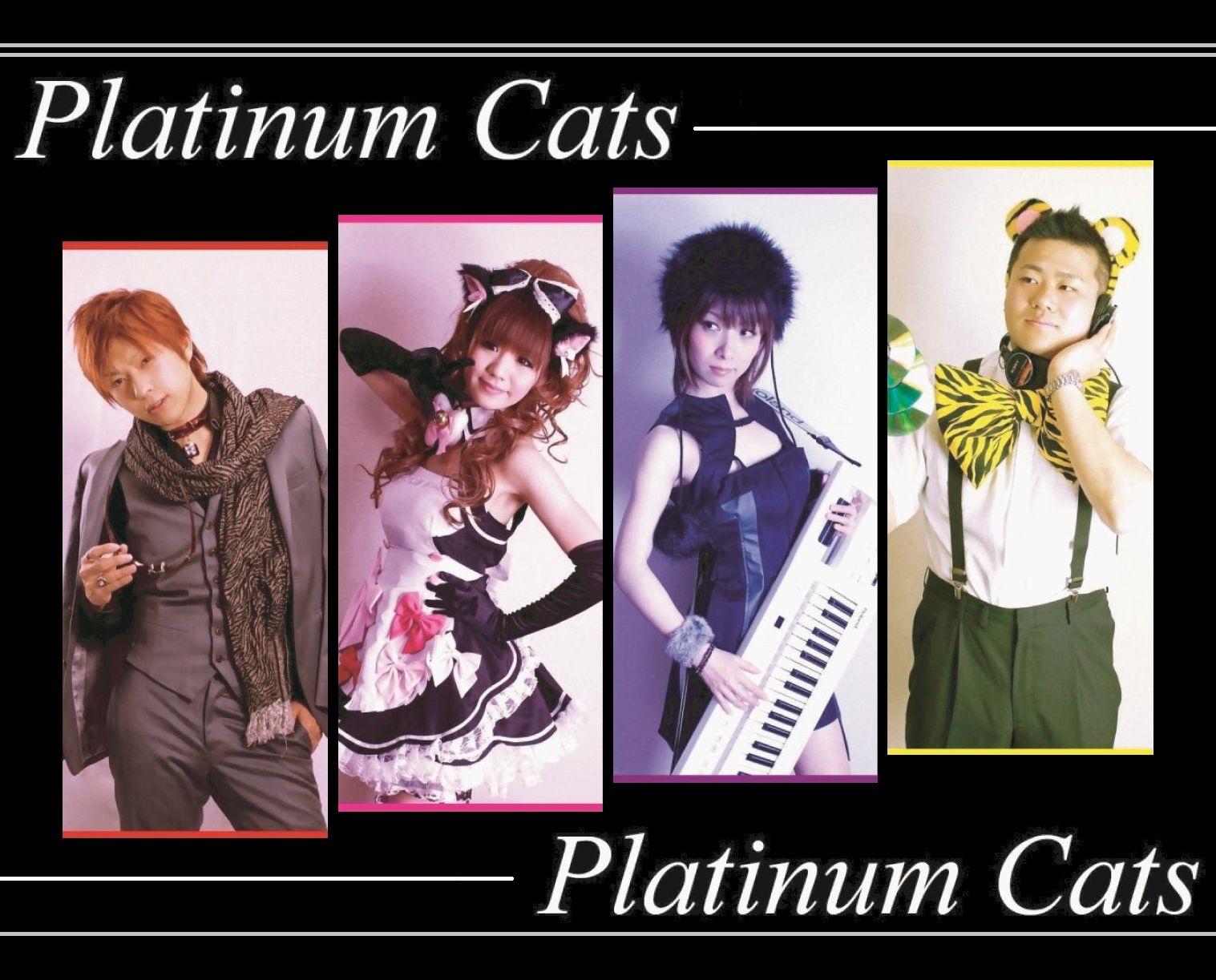 platinumcats.jpg